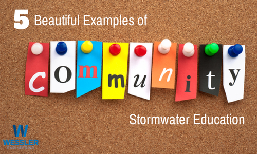 5 Beautiful Examples of Community Stormwater Education