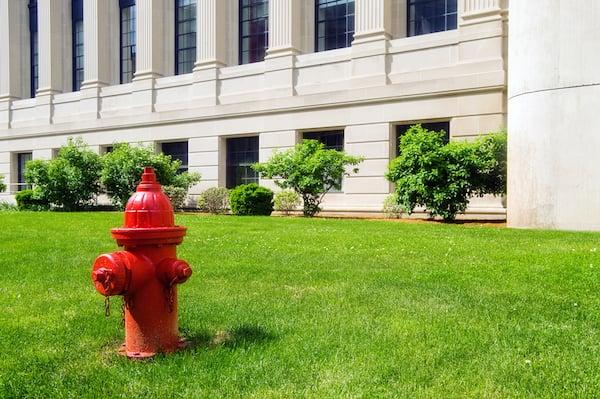 hydrant-on-grass