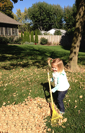 Autumn Leaves: 3 Options for Disposal